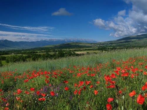 Vallei Pyreneeën